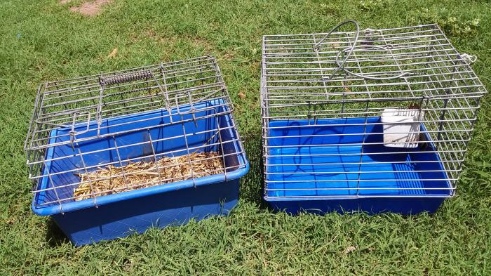 Poultry/pet carriers